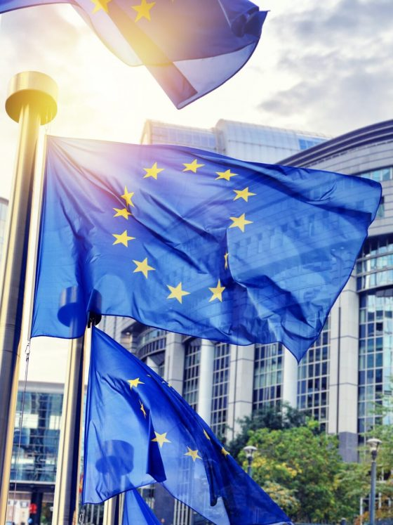 European Commission 560x747 - Project management & EU funding