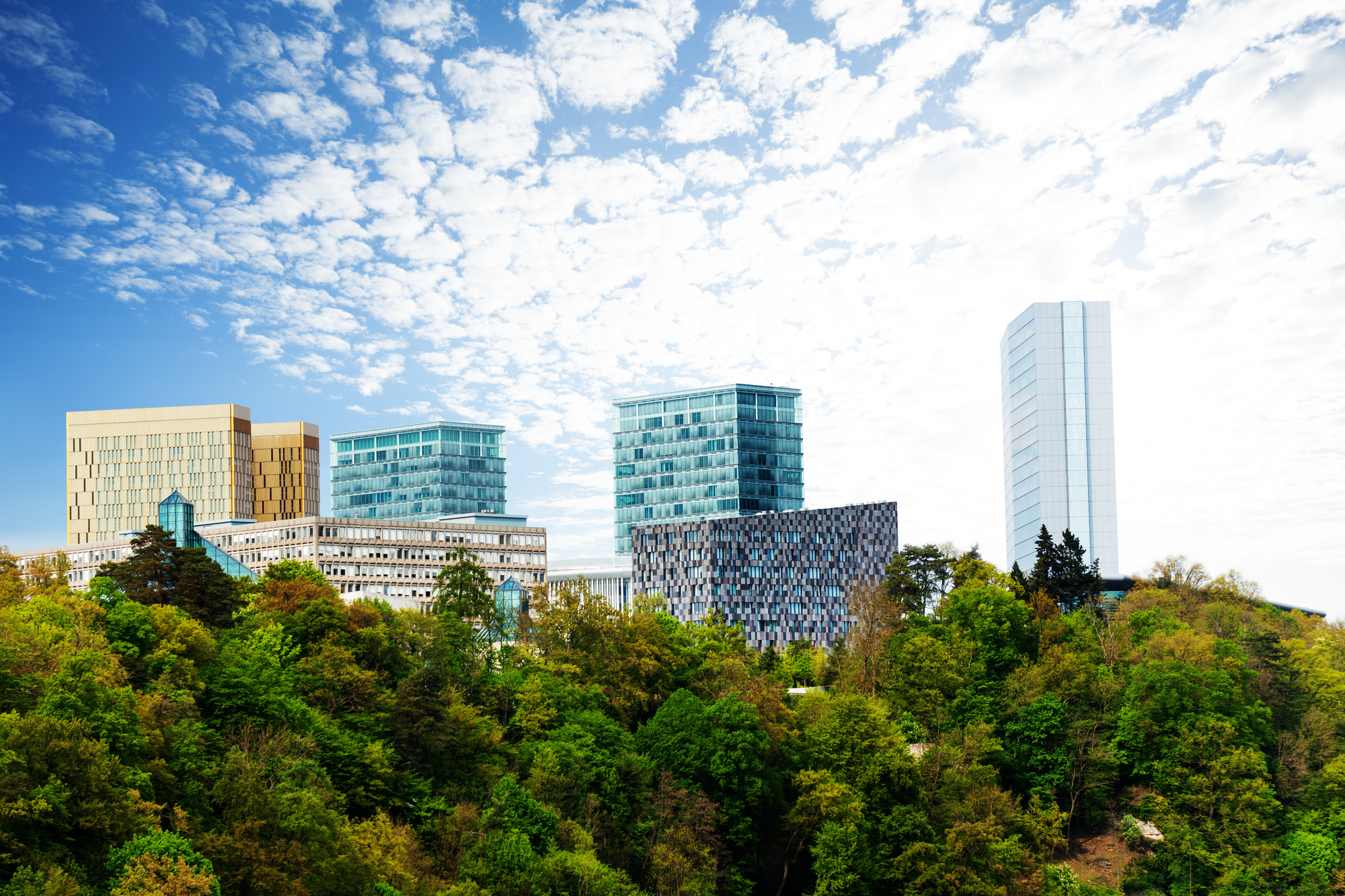 Luxembourg business - Consulting services