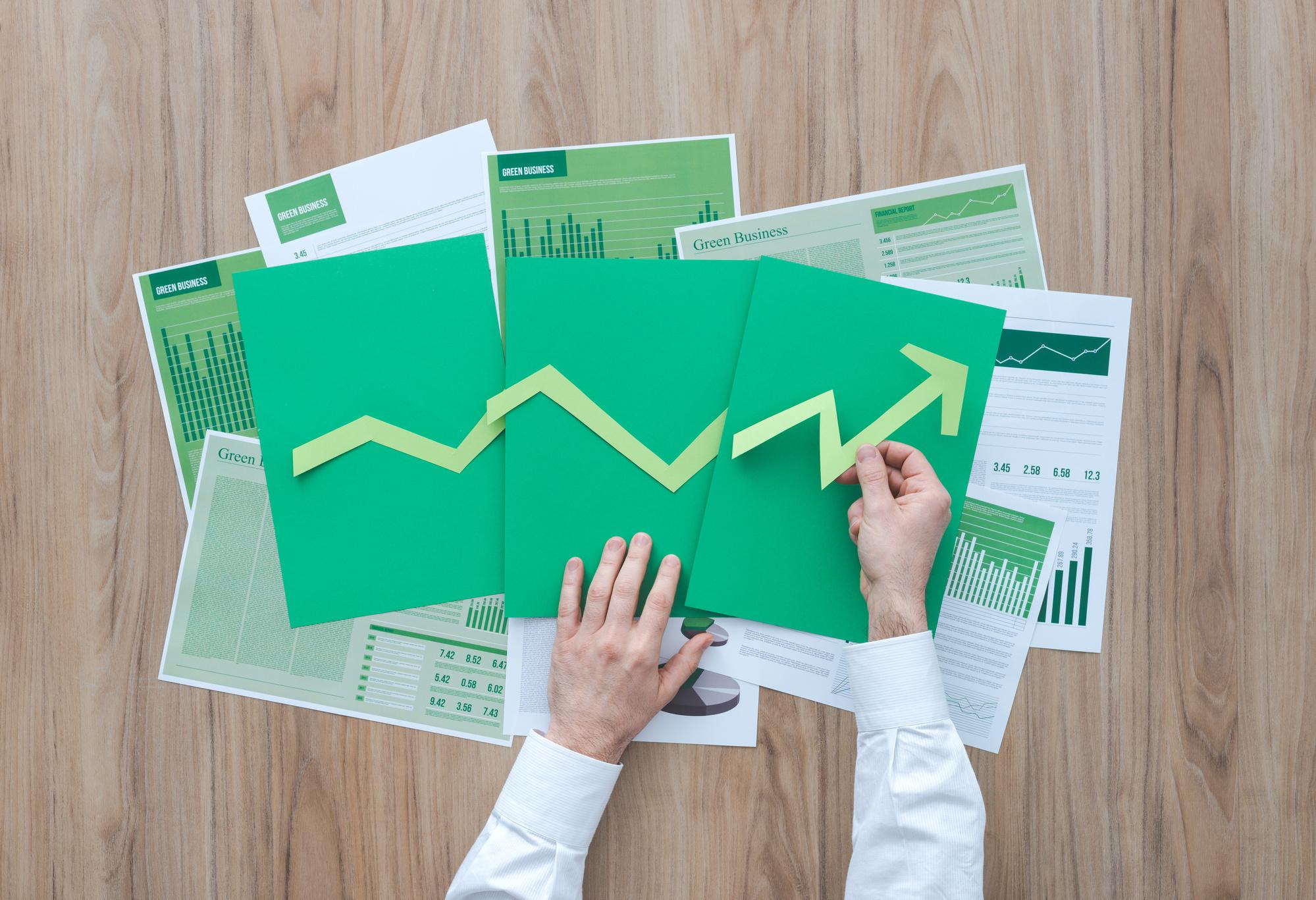 Successful sustainable business - Services de conseil aux entreprises